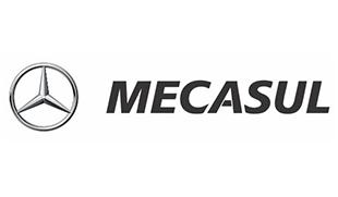 Logo Mecasul